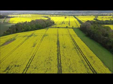 Beautiful Bedfordshire, Buckinghamshire Nature(4k Clip)-Must watch and share it. Thank You