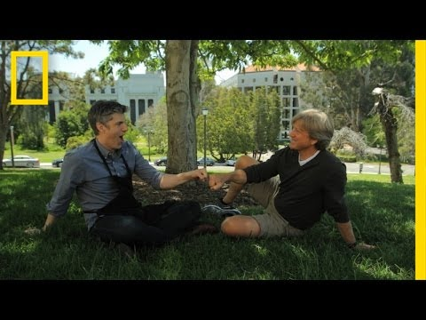On the Topic of Fist Bumps | Going Deep With David Rees