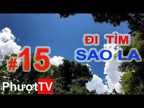 Phượt.TV   #15 - ĐI TÌM SAO LA - Bữa ăn trưa và cơm mưa rừng khủng khiếp