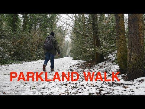 Parkland Walk Haringey - Finsbury Park, Highgate Woods, Muswell Hill (in 4K)