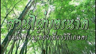 @Andaman : สวนไผ่บุตรนาค แหล่งเรียนรู้ท่องเที่ยววิถีเกษตร