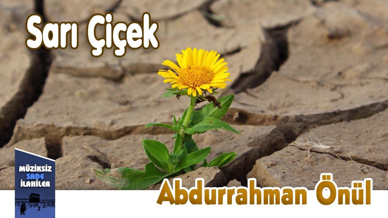 Abdurrahman Önül - Sarı Çiçek  | Müziksiz Sade İlahi
