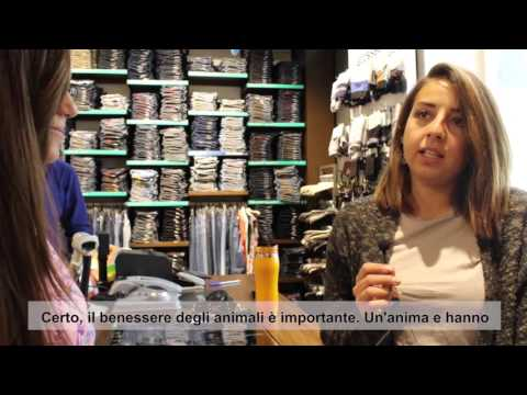 Palestine: Young Journalists for Animal Welfare (Arabic with Italian subtitles)