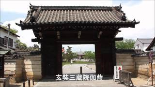 薬師寺(やくしじ)は、奈良県奈良市西ノ京町に所在する寺院であり、興...