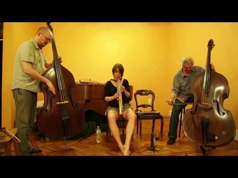 Ingrid Laubrock, Olie Brice, Ken Filiano - at Soup & Sound, Brooklyn