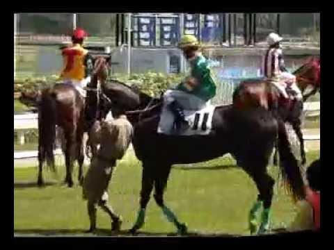 ม้าแข่งสนามนางเลิ้ง 12 มค.57 เที่ยว 1