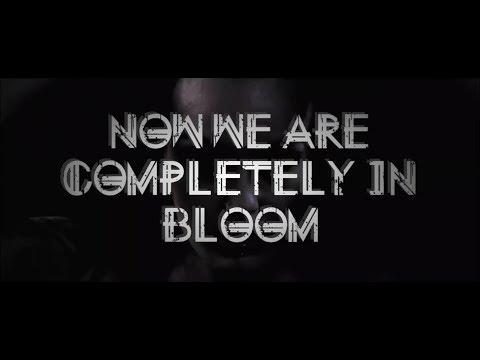 Dramalove - In Bloom (Lyric Video)