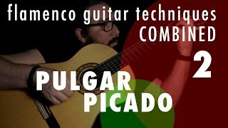 02 - Pulgar & Picado: Flamenco Guitar Techniques Combined