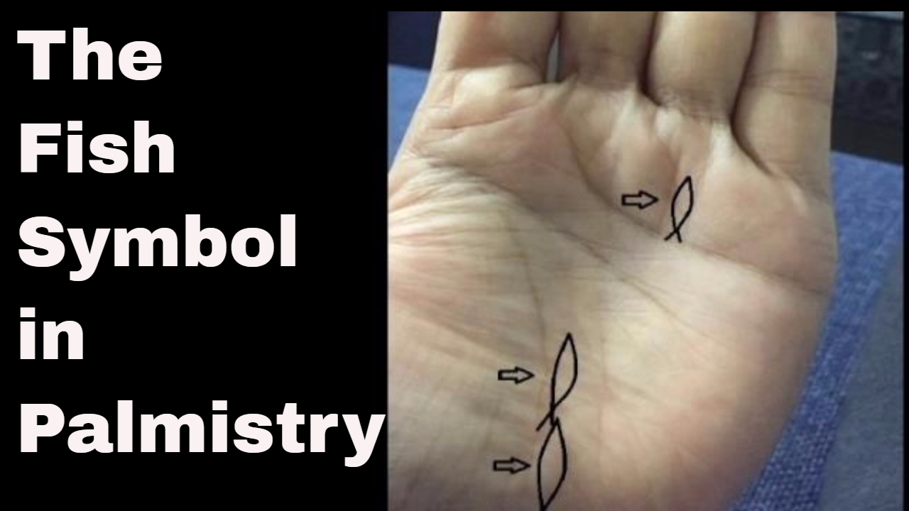 Indian Palmistry Symbols The Fish And Wealth Youtube
