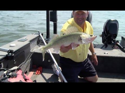 Fish Ed 030 Mid Summer Devils Lake Walleye