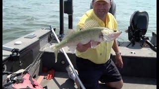 Mid Summer Devils Lake Walleye