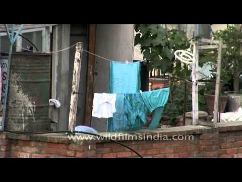 Nepali woman dries clothes on her roof in...