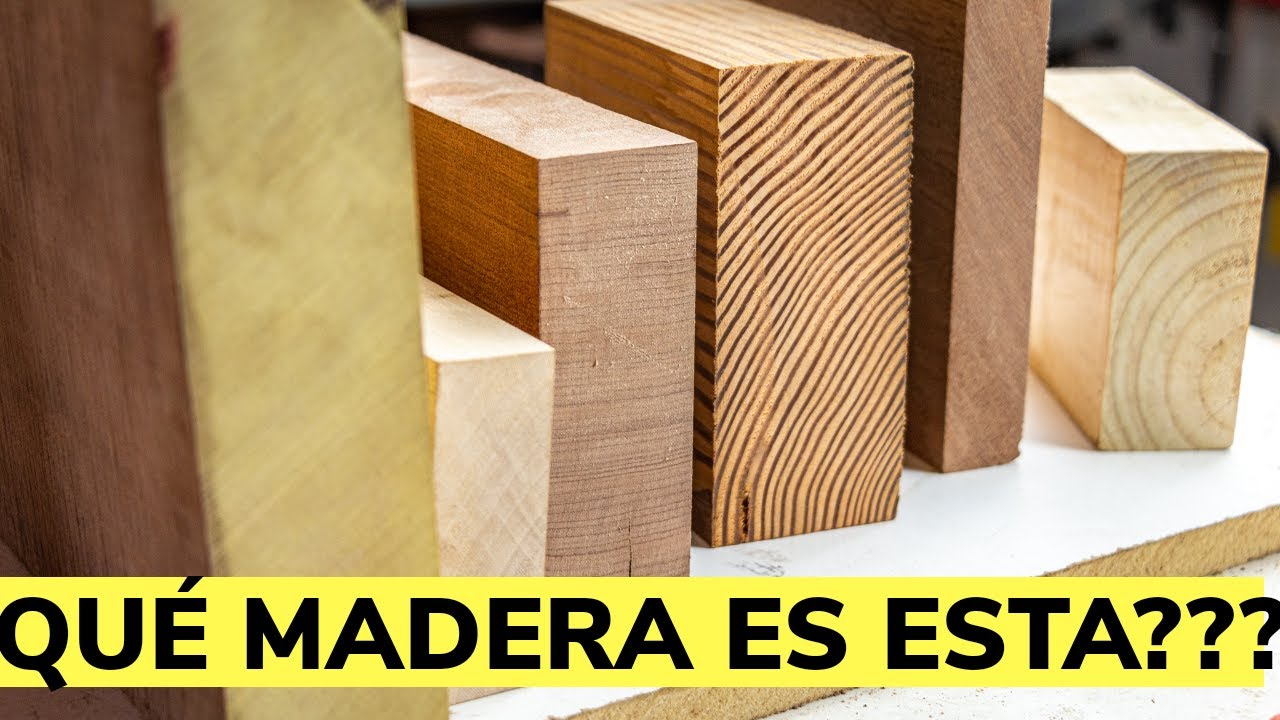 Download Cómo Identificar Los Tipos De Madera
