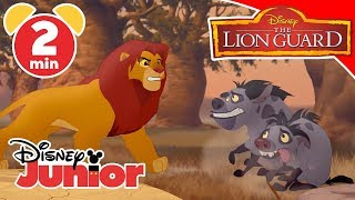 The Lion Guard | L'esercito di Scar - Disney Junior Italia