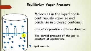 Vapor Pressure (Phase Transitions Lecture Pt 2)