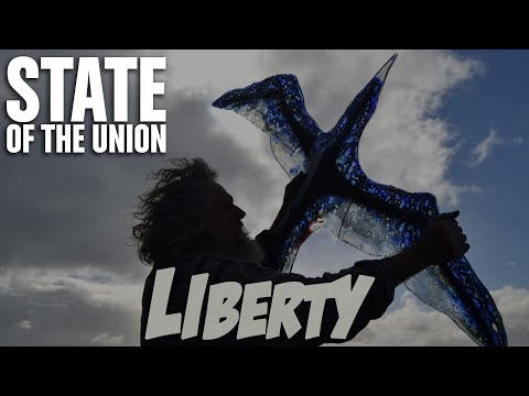 STATE OF THE UNION - Liberty (from the album INDUPOP)