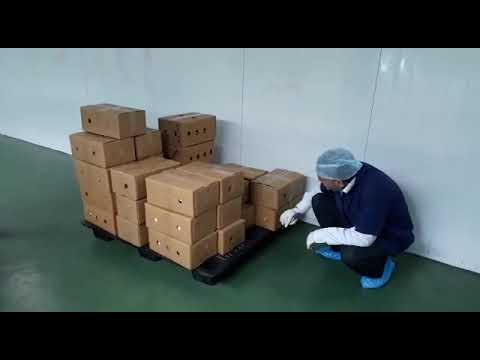 Export inspection of products