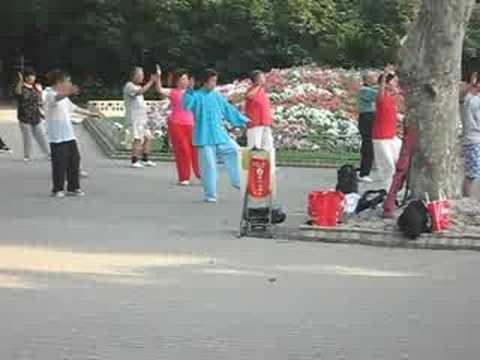 Tai Chi in Zhongshan Park