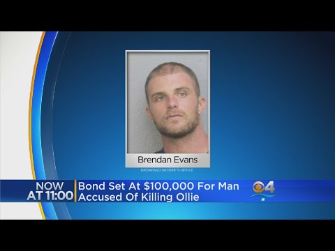 $100K Bond For Man Charged With Killing 'Ollie' The Dog