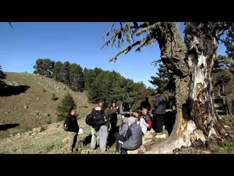 türkuaz amanos dağlarinda sonbahar gezisi  amanos keşif  dörtyol hatay