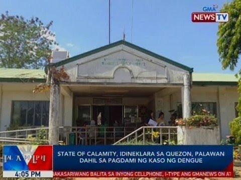BP: State of calamity, idineklara sa Quezon, Palawan dahil sa pagdami ng kaso ng dengue
