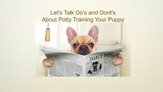 Potty Training Your Puppy | Do's And Don'ts Of Housebreaking A Puppy Video Tutorial