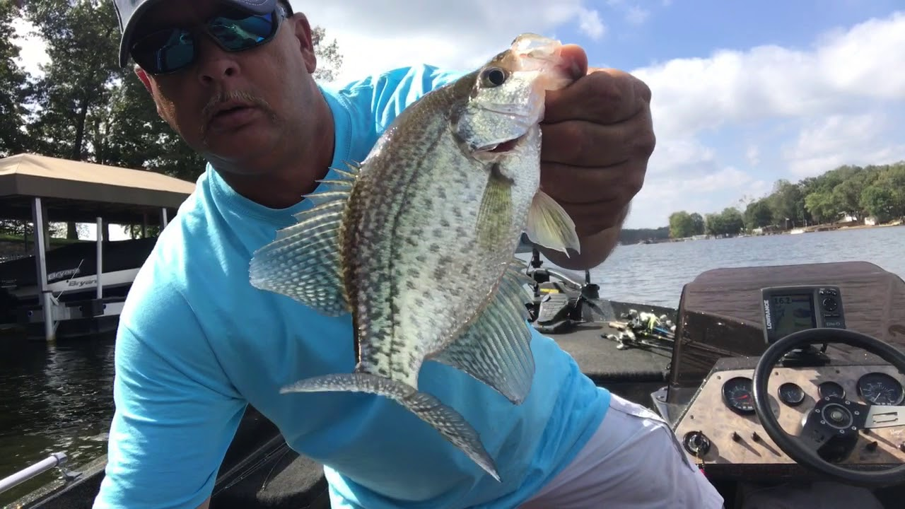 High Rock Lake NC - Crappie and Bass Fishing with another