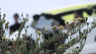 Citroen Lacoste Concept 2010 Videos