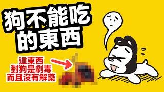 小心這東西對狗是劇毒而且沒有解藥 | 12種狗不能吃的東西 | 狗與鹿