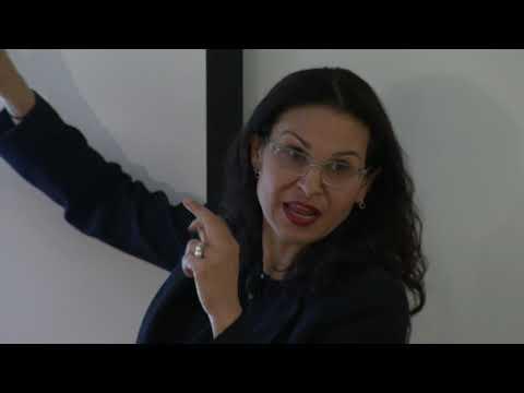 Francesca Dominici - IDSS Distinguished Speaker Seminar, Apr 2, 2019