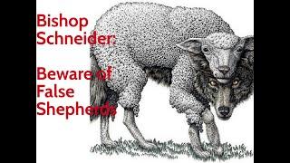 Beware False Shepherds | Bishop Schneider