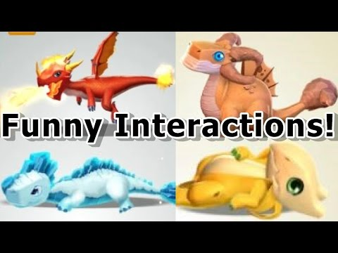 ALL Shop Dragon SPECIAL Interactions! - Dragon Mania Legends (Funny Interaction Compilation)