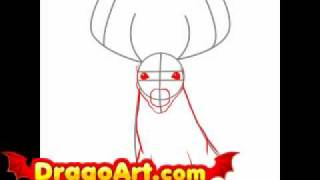 How to draw a realistic deer, step by step