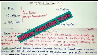 Kidney function tests(KFTs/RFTs),explained in an easy way in hindi and urdu.