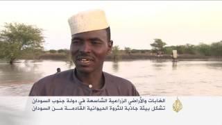 رعاة المواشي بين السودانين لا يعترفون بالحدود السياسية