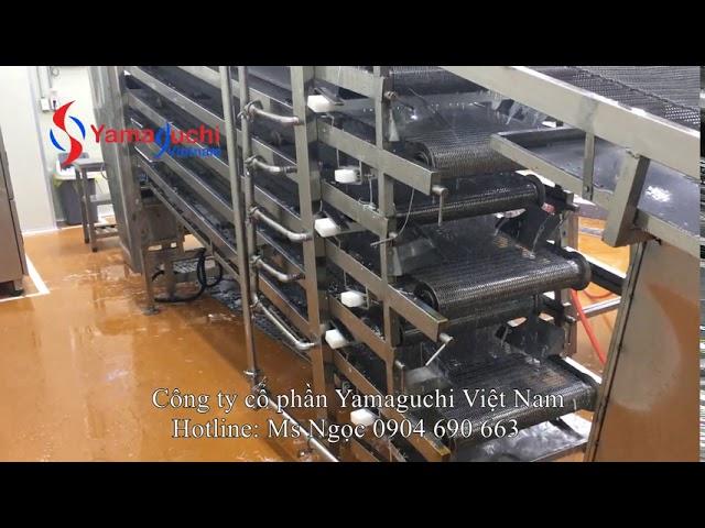 Vệ sinh băng tải thực phẩm.  Rửa băng tải thực phẩm tự động