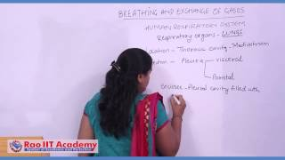 Respiration and Respiratory System of Man - AIIMS AIPMT State CET Zoology Video Lecture