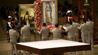 El Dasa Cathedral of Our Lady of the Angels 2014