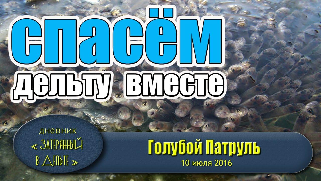 Астраханская рыбалка в дельте Волги. Спасем малька база Фора Фиш
