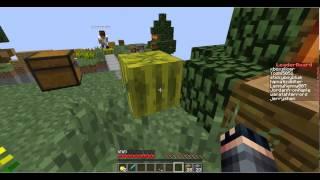 Sky Block Warriors#2{with Xboxslicer}