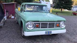 1966 Dodge D100 Pickup - Startup and Walk Around