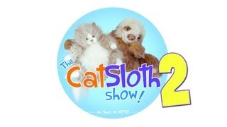 The CatSloth Show: Ep 2