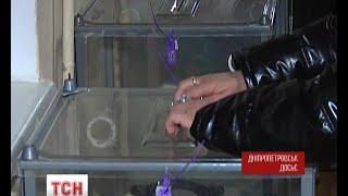 У Дніпропетровську виборчий процес опинився під загрозою зриву