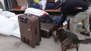 Gambar cover Yolcu valizinden eroin çıktı!