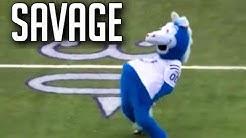 NFL Funniest Mascot Moments || HD