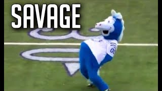NFL Funniest Mascot Moments || HD