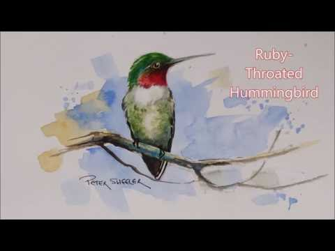 how-to-paint-a-ruby-throated-hummingbird-in-watercolour.-easy-to-follow-and-fun-to-paint.