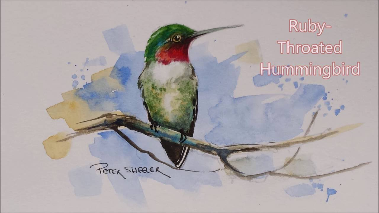 How to paint a Ruby-Throated Hummingbird in Watercolour ...