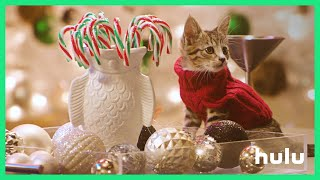 Holiday Scenics: Puppies vs Kitties - Trailer (Official)