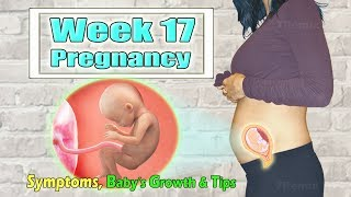 Baby Is Growing Stronger In Week 17 Pregnancy, Healthy Weight Gain Guideline To Follow~!